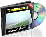 Natural Sounds Vol. 2 - Torrential Rain