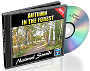 Natural Sounds Vol. 06 - Autumn in the Forest