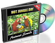 Natural Sounds Vol. 10 - Hot Jungle Day